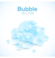 Transparent bubbles isolated on white vector image