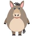 fat donkey on white background vector image