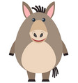 fat donkey on white background vector image