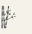 sketch of bamboo tree vector image