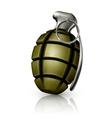 Hand grenade vector image vector image
