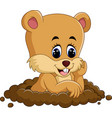 cute groundhog cartoon vector image