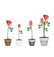 Set of Red Roses in Ceramic Flower Pots vector image