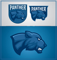 PANTHER MASCOT vector image