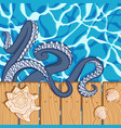 Background with water shells and octopus vector image