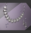 necklace and earrings vector image