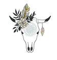 Hand drawn cow skull with ornament flower leaves vector image vector image