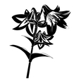 silhouette flower vector image
