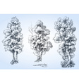 Isolated trees set hand drawn detailed vector image vector image