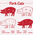 PORK meat cuts - red on white vector image