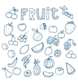 Set of Fruit doodle drawings vector image