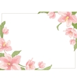 Magnolia sakura hellebore corner frame horizontal vector image
