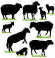 sheep and lamb silhouettes set vector image