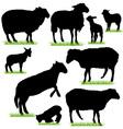 sheep and lamb silhouettes set vector image vector image