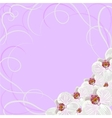Decorative frame with orchid flowers vector image vector image