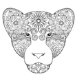 Beautifull lioness vector image