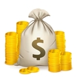 Stacks of coins and money bag vector image