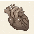Grunge Human Heart vector image vector image