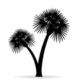 palm tree silhouette 04 vector image vector image