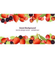 mixed cherry and berry sweet summer vector image