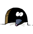 mouse looks out of a mink vector image vector image