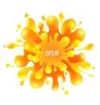 Orange paint splash isolated on white background vector image