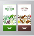 banners with herbs and spices vector image