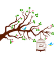 Tree Branch with bird cage and two birds vector image vector image
