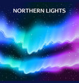 starry northern lights background vector image