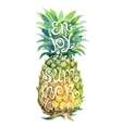 Bright watercolor pineapple silhouette with grunge vector image