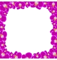 Beautiful orchid flowers frame vector image