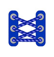 laces in dark blue design vector image