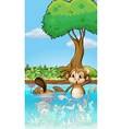 A monkey and a beaver in the pond vector image vector image