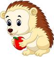 cute hedgehog cartoon vector image