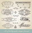 menu calligraphic design element vector image