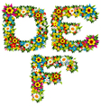 flower and bush letters 02 vector image