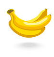 Banana on white background vector image
