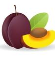 Prunes vector image
