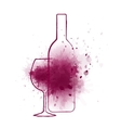 wine bottle and grape splash vector image