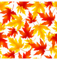 seamless pattern with colorful leaf fall vector image vector image