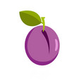 plum icon flat style vector image