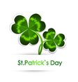 StPatricks Day Greeting vector image