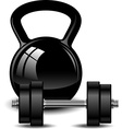 Kettlebell and dumbbell vector image vector image