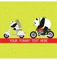 Funny pandas delivery service vector image