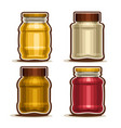 set of glass different jars vector image
