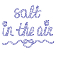 Sand in the air vector image vector image