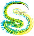 Sketch font Letter S vector image vector image