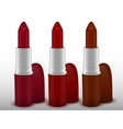 Three tubes of lipstick vector image
