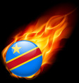 Round glossy icon of dr congo vector image
