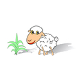 A funny sheep on a white background vector image